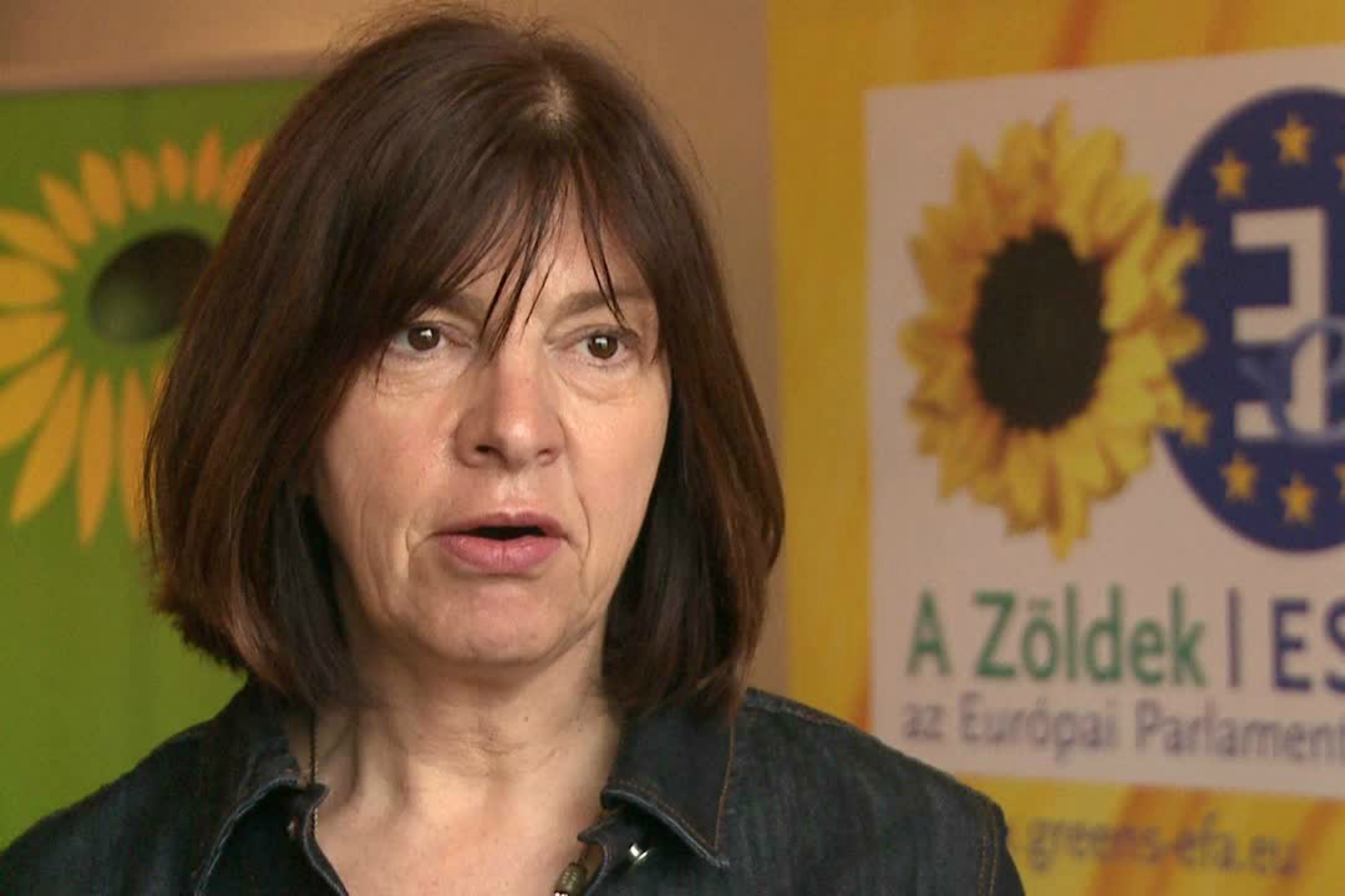 Rebecca Harms [Website of Green/EFA group]